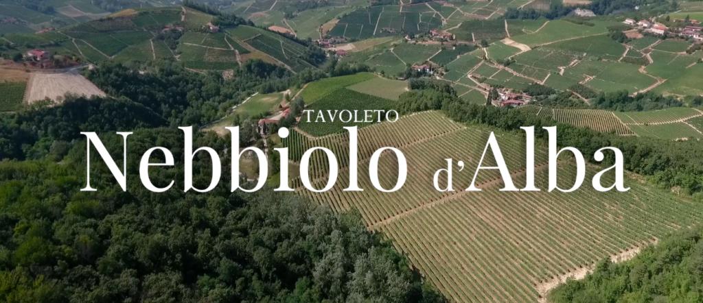 Le vigne di Tavoleto a San Rocco Seno d'Elvio